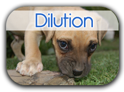 Dilution Button