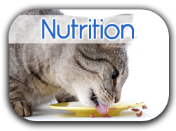 Nutrition Button